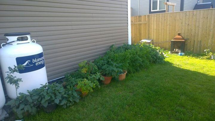 q garden planning ideas