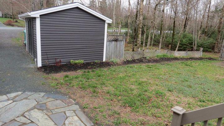 q back yard renovation