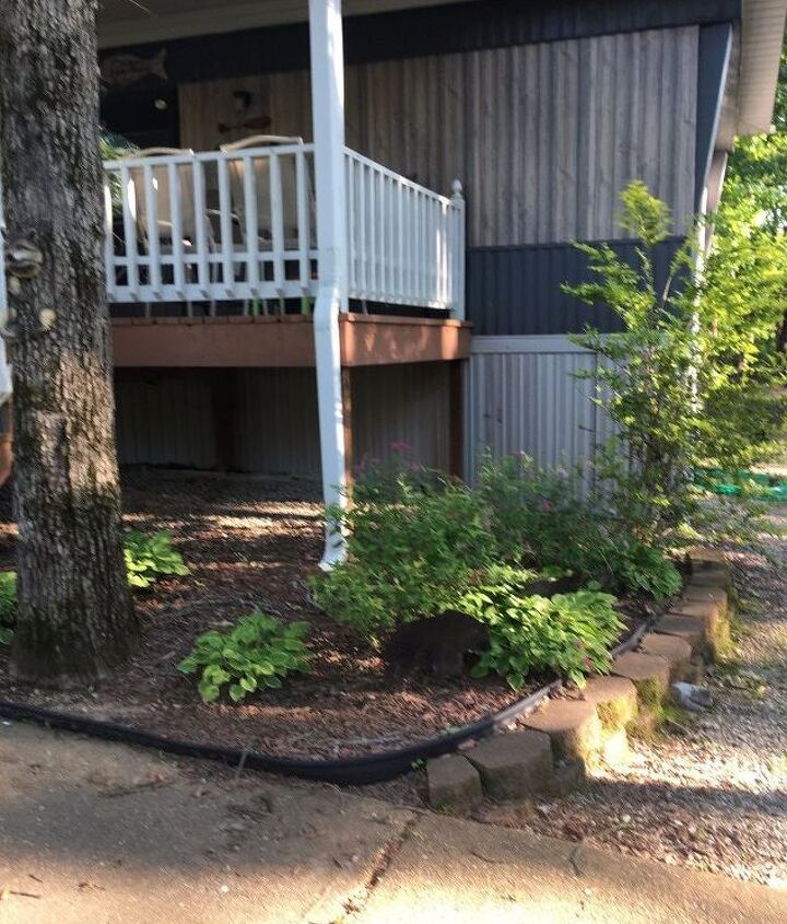 q what should i do with the landscaping at our lake house