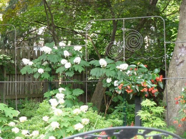e garden fence trellis from copper pipe