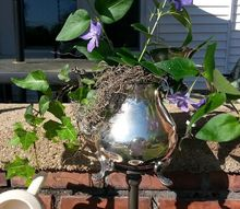 bird feeders and of silver china