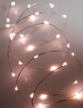 Fairy string lights would work great on something like this