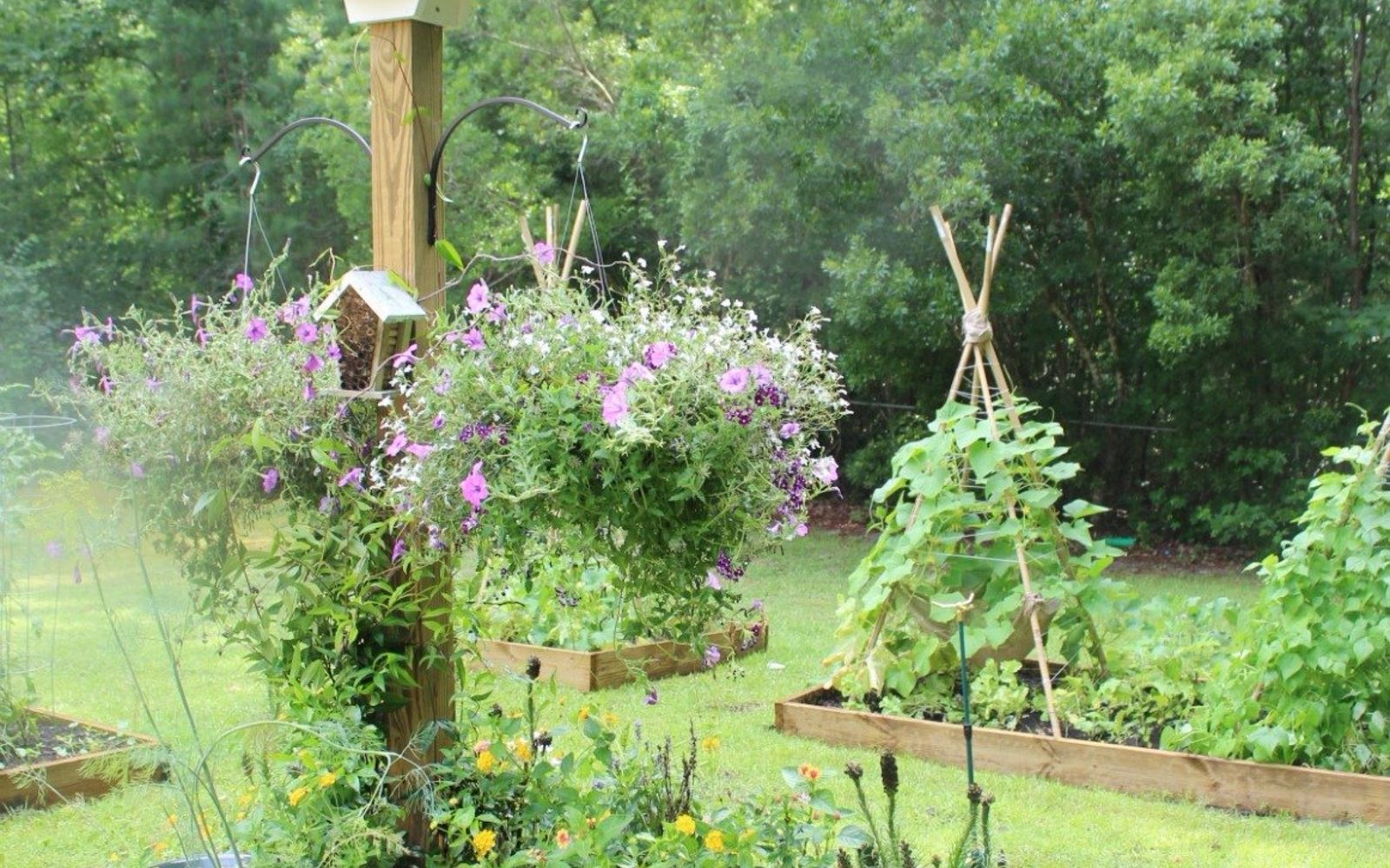 s 30 ways for you to style your garden, Arrange A Garden Special For Bees With Flower