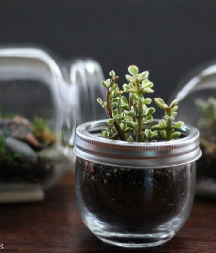 s 30 ways for you to style your garden, Put Your Garden In A Jar