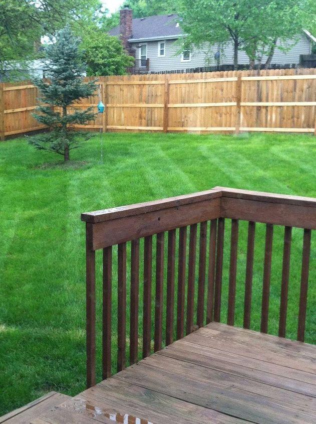 q gardening landscape question suburban backyard
