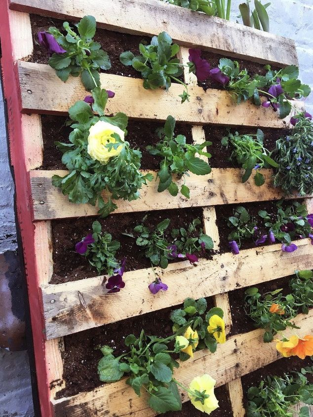 s 10 wonderful ways to use pallets and the results are beautiful, Plant A Garden Inside Of Pallets