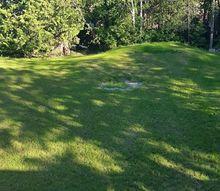 q how can i make my big boring backyard cozy