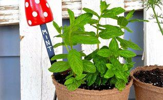 diy toadstool herb plant markers