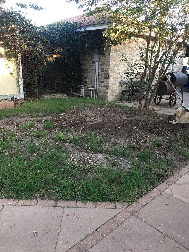 q make something where grass will not grow
