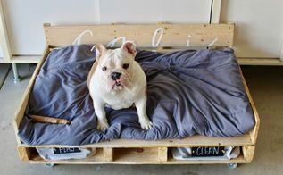 diy dog pallet bed