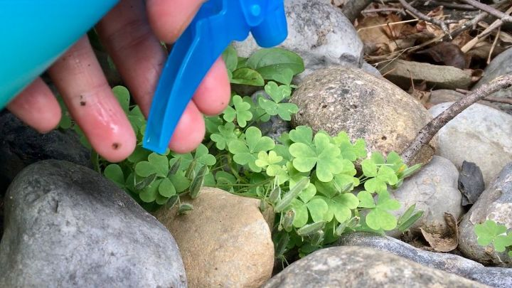 four killer ideas to get of weeds forever