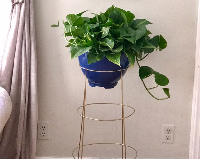 s 31 stunning ways to display your plants, Repurpose An Old Tomato Cage