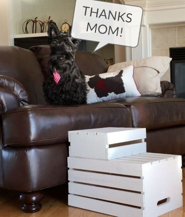 s 10 pawesome projects for your doggy, Make Snuggling Easier By Building Stairs