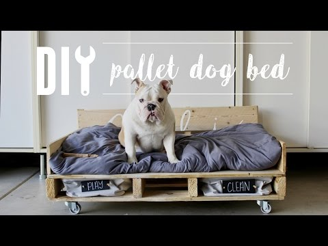 s 10 pawesome projects for your doggy, Have Your Puppy Sit To Measure Out A Bed