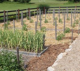 Amazing How To Weed A Garden. How To Eradicate Weeds From Your Garden Make Gardening  Fun