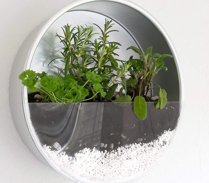 s 10 unique ways to plant your herb garden, Plant Herbs In Your Favorite Baking Tin