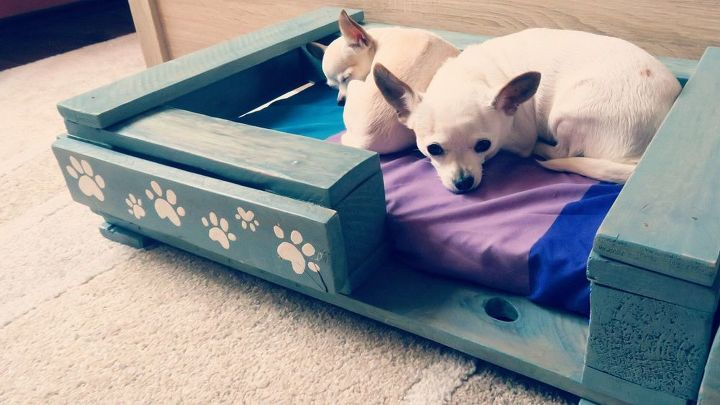 s 30 great ideas for every pet owner, Build A Giant Bed For Your Puppies To Share