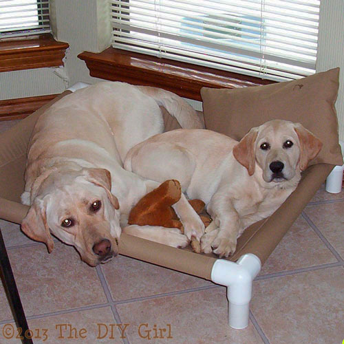s 30 great ideas for every pet owner, Build A Cot For Puppies With PVC