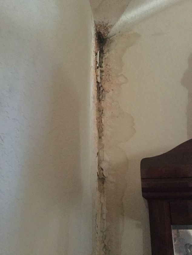 q removing mold damage in corner of house and re painting area