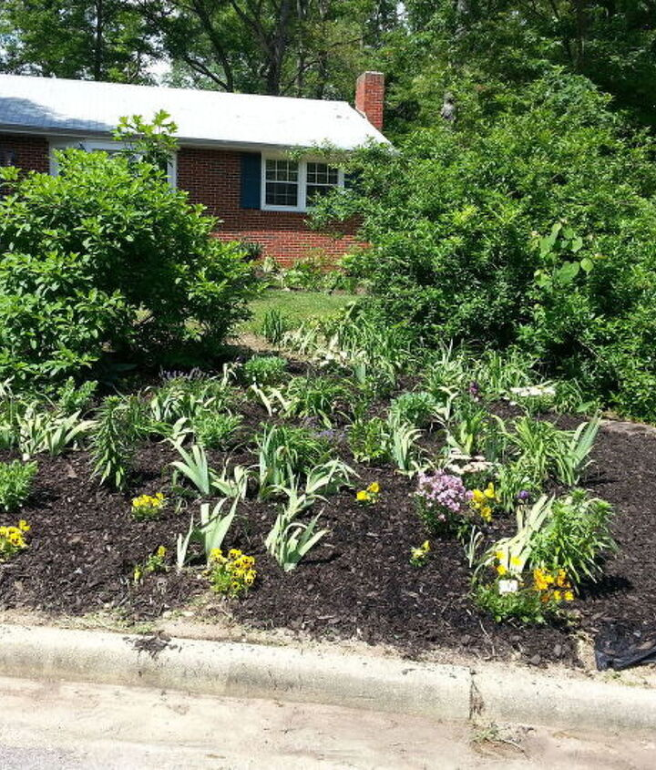 s 10 charming ways to add instant curb appeal to your home, Plant Colorful Perennials