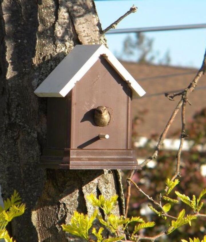 easy diy fence post birdhouse