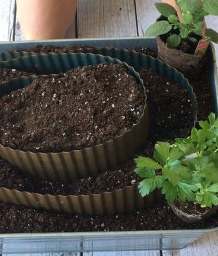 s 10 unique ways to plant your herb garden, Create A Sprawling Garden Of Herbs