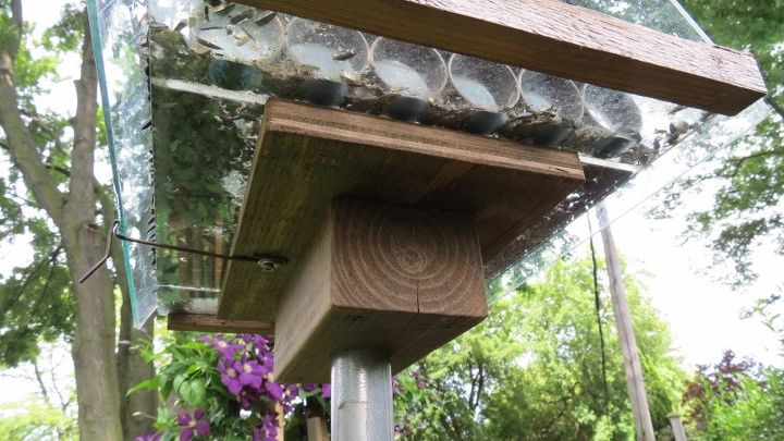 how to make an awesome squirrel proof bird feeder