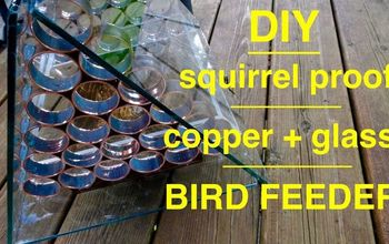 How to Make an Awesome Squirrel Proof Bird Feeder!