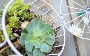 simple birdcage succulent planter
