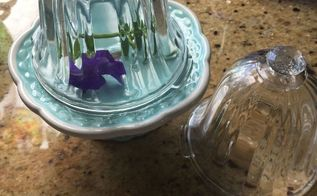 instant cloche from extra solar light parts, Cloche s with violas