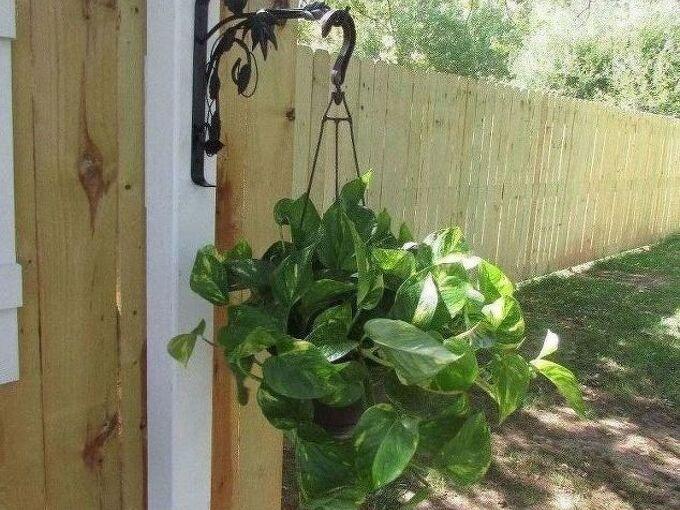 fence post plant hanger