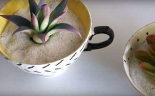 diy thrifted updates succulent tea cups