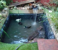 redo of back pond
