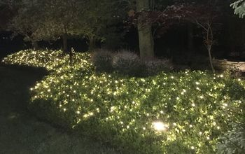 if you want your yard to sparkle at night try this