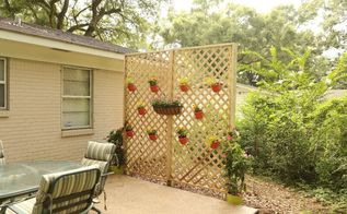 lattice wall for backyard privacy