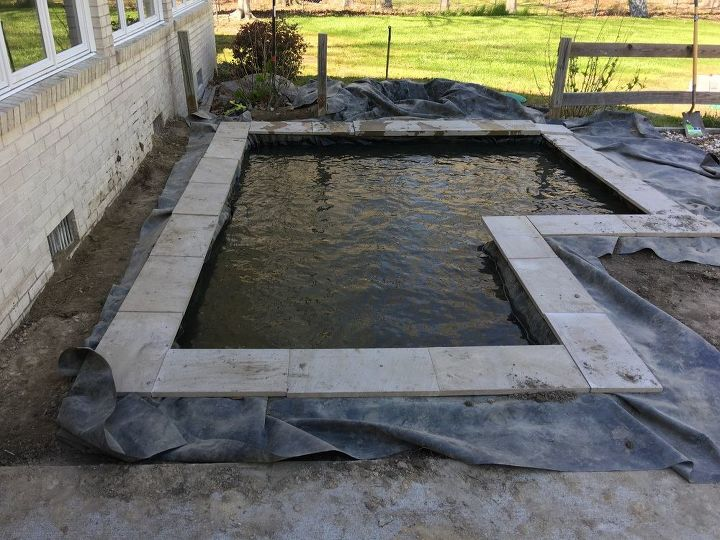 Diy modern backyard koi pond on a budget hometalk for Modern koi pond design photos