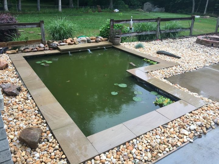 Diy modern backyard koi pond on a budget hometalk for Pool koi aquatics ltd