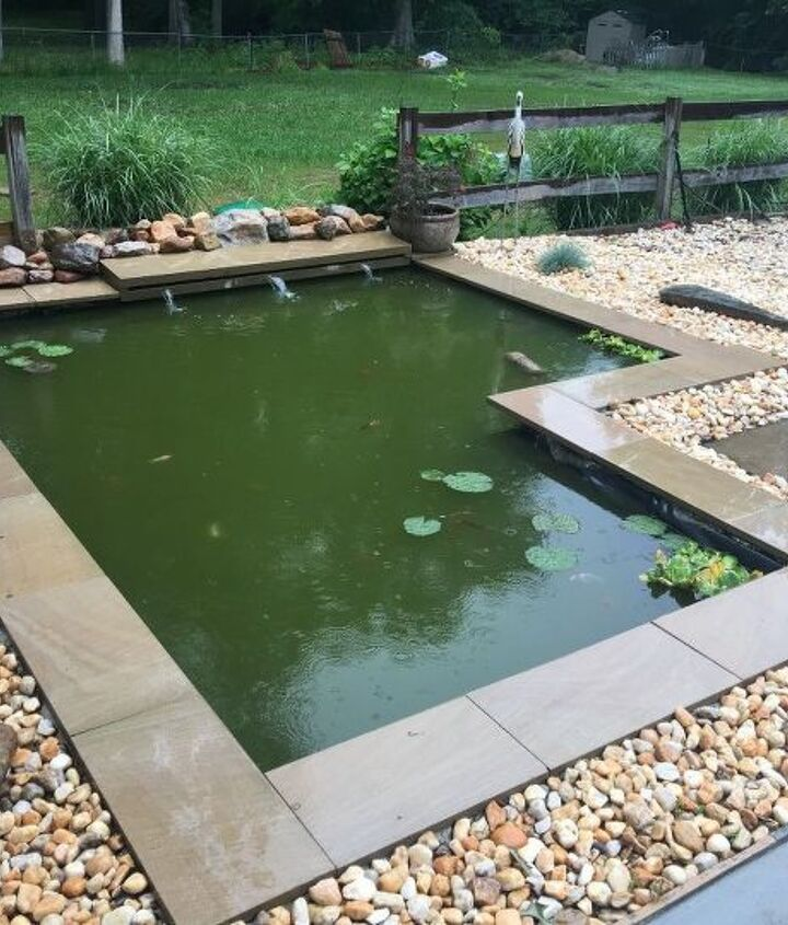Diy Modern Backyard Koi Pond On A Budget Hometalk