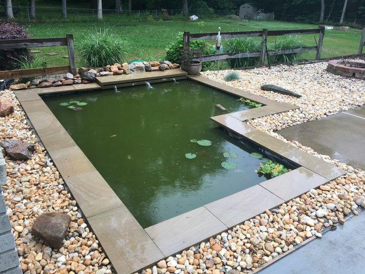 diy modern backyard koi pond on a budget - DIY Modern Backyard Koi Pond On A Budget Hometalk