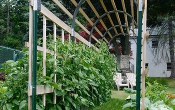 12 DIY Tomato Cages Ideas To Make Your Grow Taller