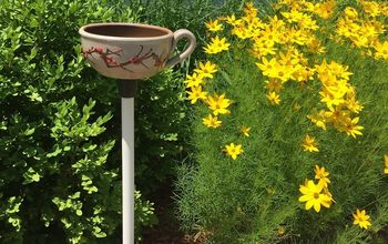 diy teacup or dish bird feeder