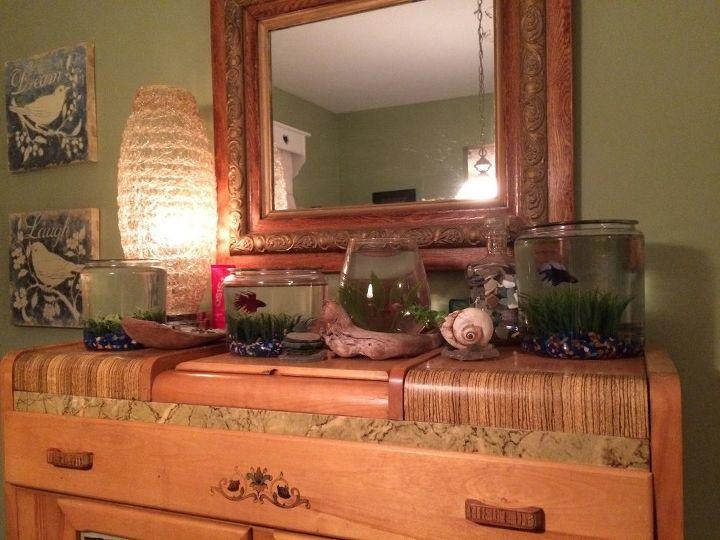 fish bowl fabulous