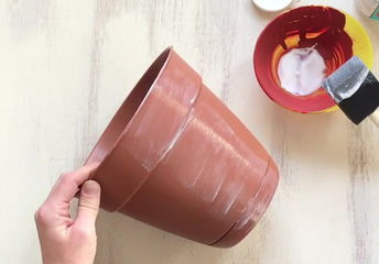 5 great ideas for your ordinary terra cotta pots