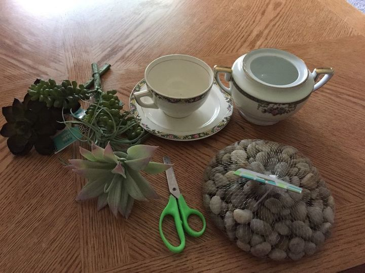succulent teacups project