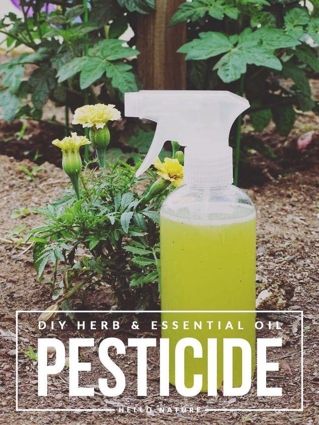 herb and essential oil pesticide