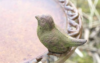 Birdbath- Simple Tips and Tricks for Cleaning
