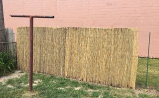 privacy fencing on a budget