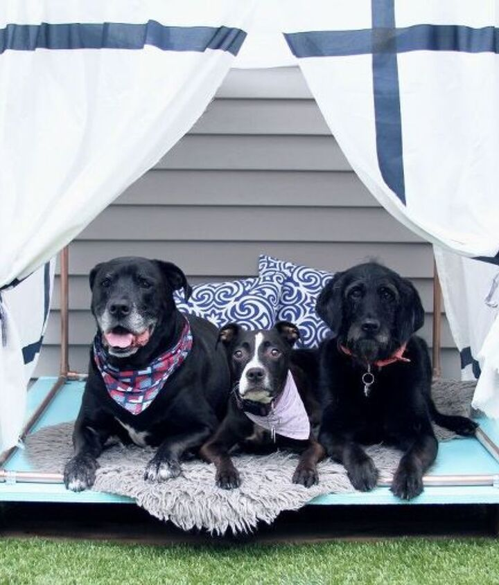 diy outdoor dog bed lounger