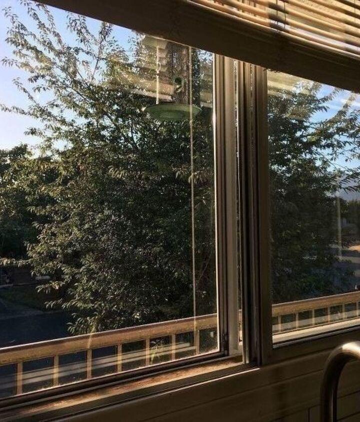 peppermint clean windows
