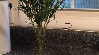 , Use a spring as a bud vase by adding a test tube in the center of the spring to hold water